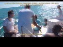 Part 17 Pleiadian Alaje Lightwork Atlantis Bimini Russian Sub