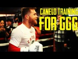 Canelo Alvarez in Training for Gennady Golovkin | TFG