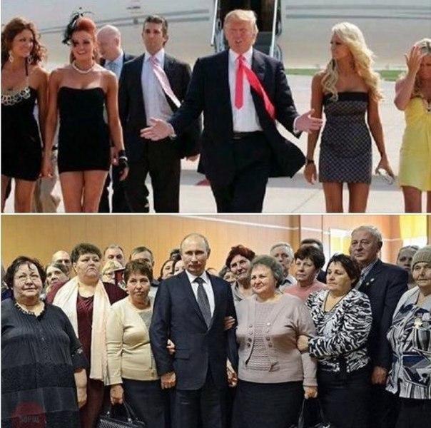 Картинки по запросу трамп и телки