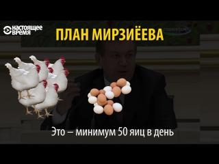 Бизнес-план Мирзиёева: держать по 100 кур