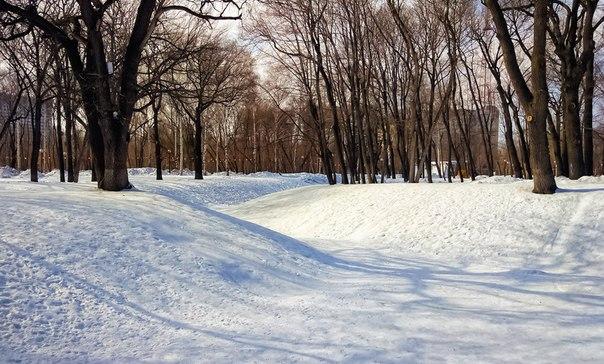 Парк Гагарина Фото: Александр Новак