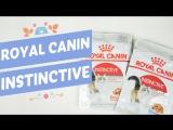 Royal Canin Instinctive - влажный корм для взрослых кошек и котят