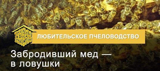 Журнал Пчеловодство За 2012 Г.
