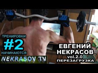 шоу NEKRASOV TV 2016. Евгений Некрасов vol 2.0. Перезагрузка. Надо подкачаться #2. Тренировка