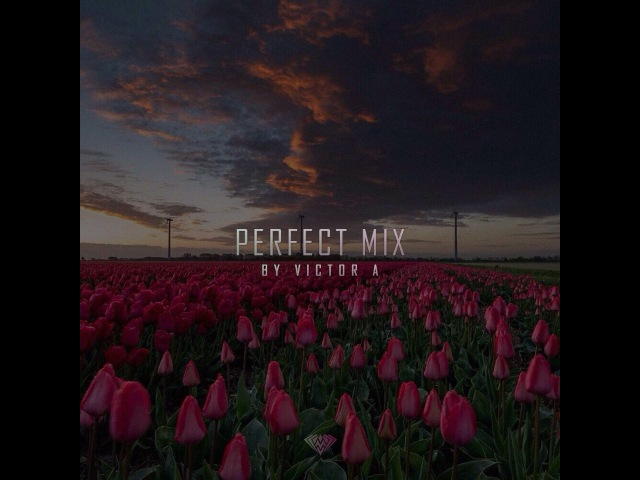 Perfect mix- Victor Anzel