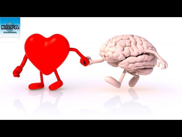 Những Điều Bắt Buột Phải Làm Nếu Bạn Muốn Có Một Bộ Não Tươi Trẻ Và Cuộc Sống Khỏe Mạnh