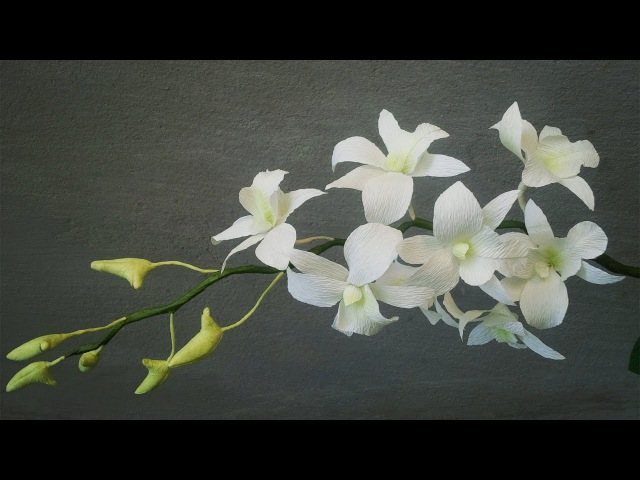 ABC TV | How To Make White Dendrobium Orchids Paper Flowers From Crepe Paper - Craft Tutorial