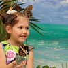 """Музей бабочек """"Тропический Рай"""". Продажа бабочек"""