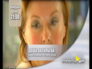 Даша Васильева. Любительница частного сыска.
