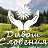 Дивош Словения