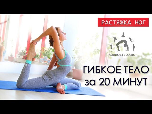 ГИБКОЕ ТЕЛО за 20 минут / Работа над гибкостью ног / Упражнения на растяжку