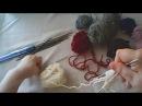 Вяжем спицами Урок № 4 Носки на 4 спицах Эластичная резинка Вывязывание пятки