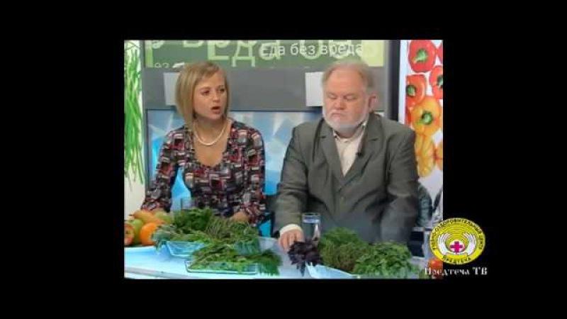 Зелень. Русская кухня. Ольга Огулова