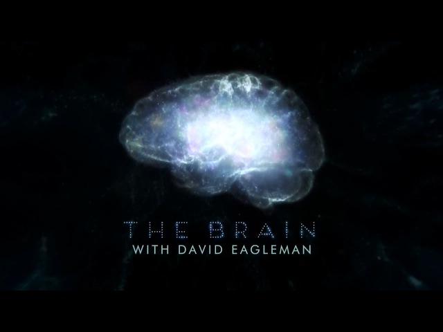 Мозг Человека 5 серия 2015 HD