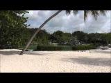 Chankanaab Park-Cozumel-Cruise Excursion
