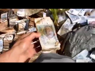 Миллиарды рублей гниют под солнцем.