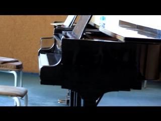 Фортепиано (ВОКИ)