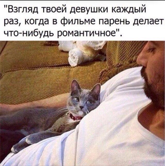 _ioqRhLRmzk.jpg