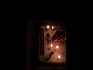 Команда сериала Kara Sevda поздравила с Днем Рождения Бурака. (Кемаля).