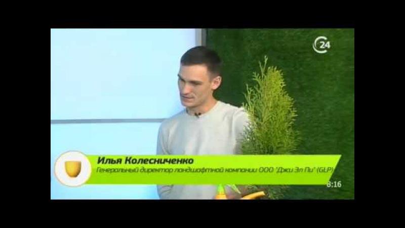 Гость: Илья Колесниченко, генеральный директор Джи Эл Пи (GLP)