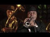 Fanfare Ciocarlia feat. Adrian Raso at Montreal Jazz Festival 2016