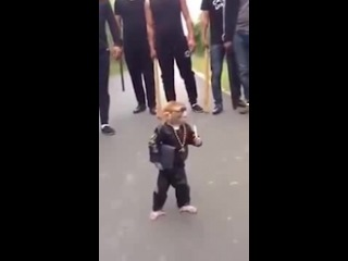 THE GANGSTER MONKEY