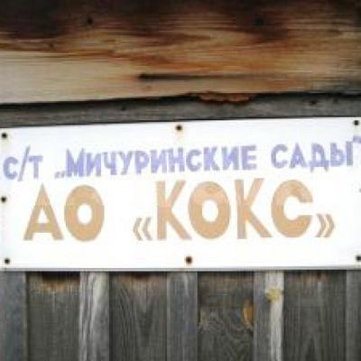 Шишки дешево Серов МДА online Брянск