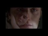 Lee Williams - 10 Movies