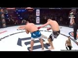 Сергей Харитонов уходит в глубокий нокаут за 16 секунд