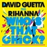 David Guetta - Who's That Chick ? (feat. Rihanna) [Instrumental]