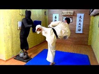Как улучшить удар Маваши и координацию _ Киокушинкай каратэ kyokushinkai _MMA Muai Tai _Единоборства