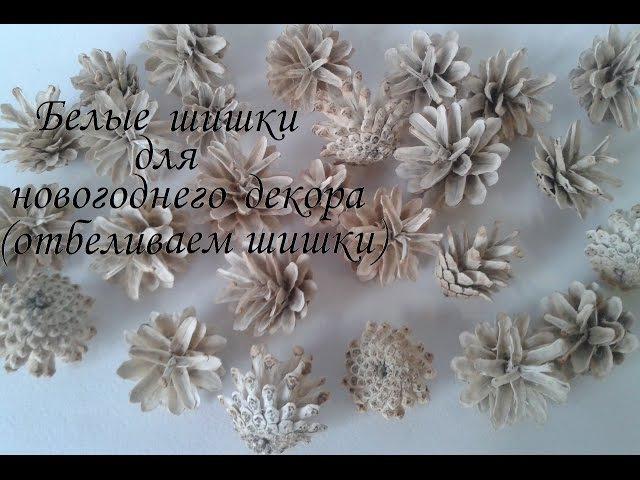 Белые шишки для новогоднего декора отбеливаем сосновые шишки Сама Я mk