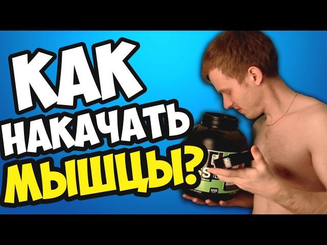 Как НАКАЧАТЬ МЫШЦЫ? | КАК СТАТЬ КАЧКОМ? | Шоу ДЯДИ ДОБРО!