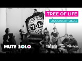 MUTE SOLO  Tree of life Band  Unconditional