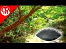 Relaxing Hang Drum music by Totohm Shanti