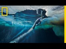 Emperor Penguins Speed Launch Out of the Water National Geographic