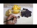 Как нарисовать айву и чёрный виноград акварелью
