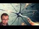 Нейронные сети за 30 минут: от теории до практики.
