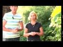 Актинидия. Как выращивать ч.2 - YouTube