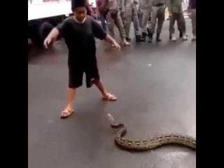 На ребенка кинулась змея! МАУГЛИ
