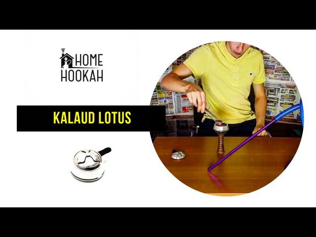 Release 10 : hookah klaud lotus