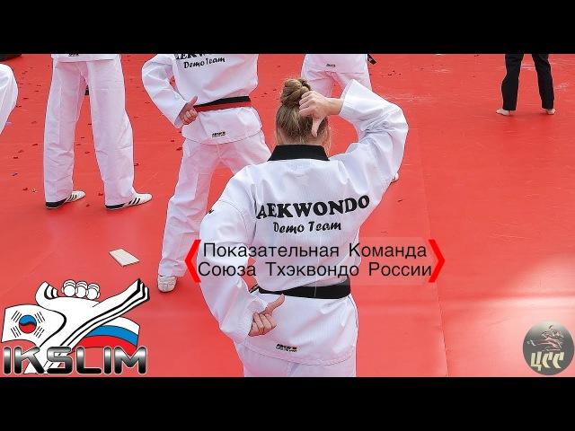 Показательная Команда Союза Тхэквондо России - День Города 2017