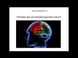 Самостоятельное изучение языков матричным методом (Webinar)