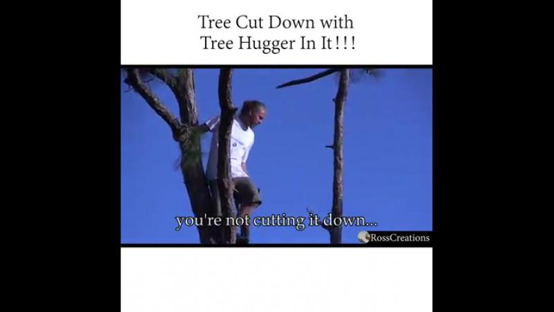 Der Baum wird gefällt, besetzt oder unbesetzt!
