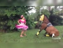 Колумбийский танец с лошадью