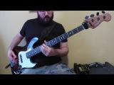 Gojira - Silvera (Bass Cover) - ProgressiveGroove Metal Bass Lesson
