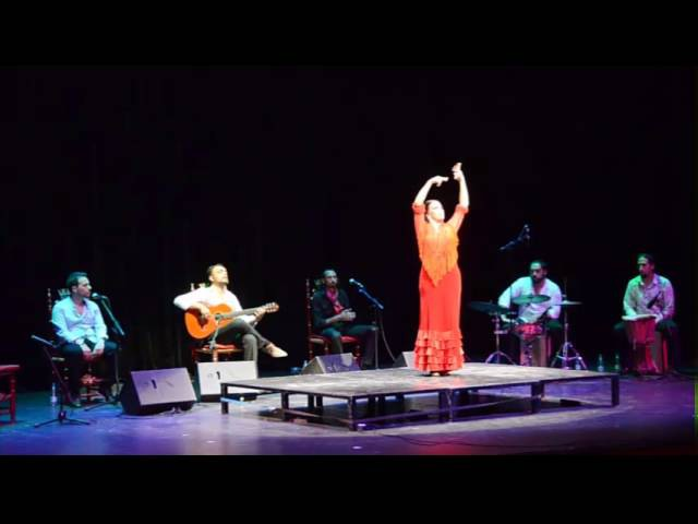 II Festival Arte Flamenco Estella-Lizarra 2016 - Belén López (Alegrías)