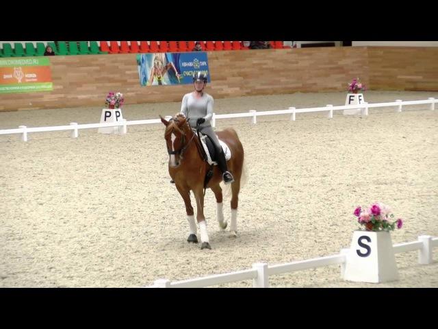 24 09 16 Ярмарка лошадей Викториус 2008