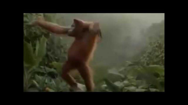 Kopmak Buna Denir(Eğlenceli Videolar)