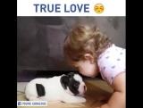 Это настоящая любовь!